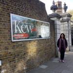 Kew - Bel Harris